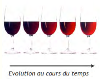 couleurs_rouge.png